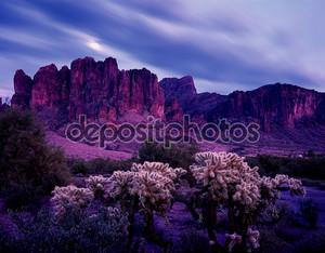 аризонская пустыня