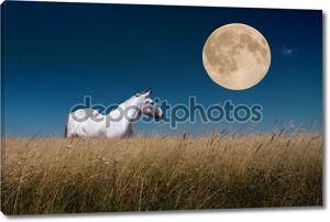Ночной пейзаж с лошадьми на Луне