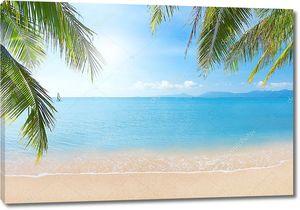 Пляж с кокосовой пальмы и море