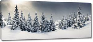 Зимний лес в сумерках