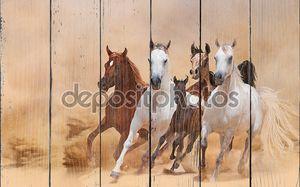 Лошади бегут в пыли