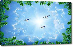 Журавли в небе
