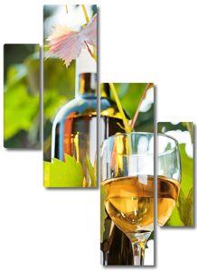 Бутылка и бокал вина с листьями винограда