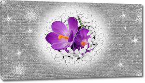 Цветы из стены