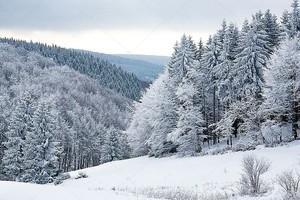 Зимний снежный пейзаж