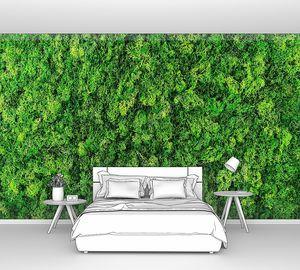 Фоновая текстура из зелени