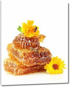 Медовые соты с желтыми цветочками