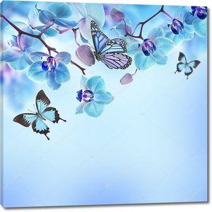 Фон с синими орхидеями и бабочками