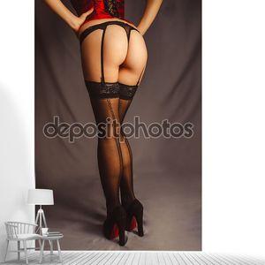 Сексуальная женщина  в макро белье чулки с suspende
