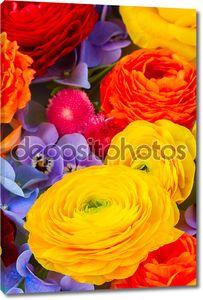 Ffesh цветы фон