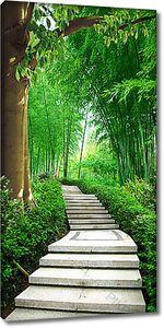 Ступенчатая тропа среди бамбука