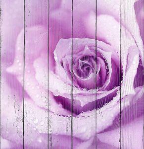 цветок с утренней росой