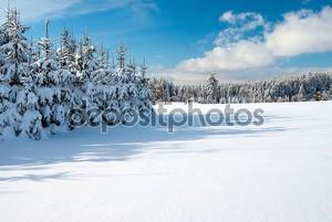 Зимний пейзаж пейзажи с плоской округа и леса
