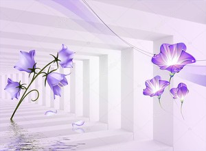 Коридор, тень и свет, фиолетовые цветы колокольчики