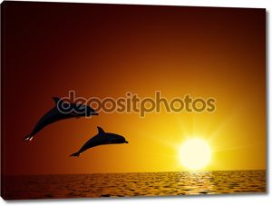 Two dolphins swimming in the ocean