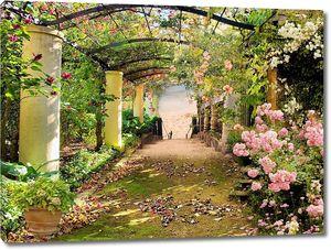 Туннель с розовыми цветами в парке