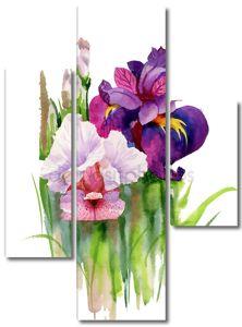 Акварель цветущих ирисов