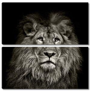 грустно Лев
