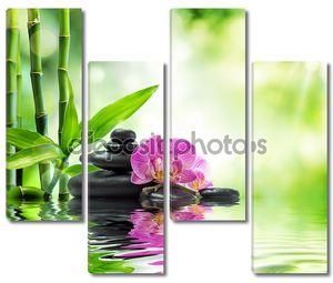 Фон спа - фиолетовые орхидеи черные камни и бамбука на воде