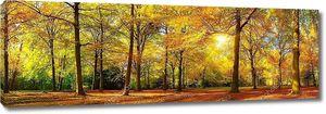 Великолепная Осенняя панорама