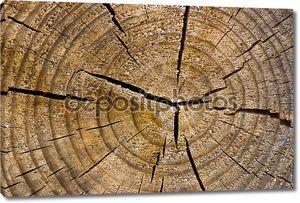 старые деревянные текстуры, привет качество фона