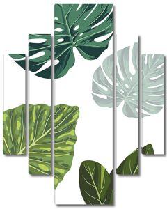 Пальмовые листы