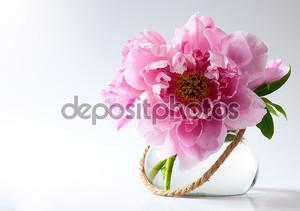 Весенние цветы в вазе на белом фоне
