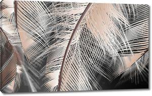 Большие бежевые перья на черном фоне