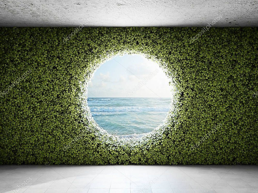 Фотообои «Большое круглое окно в стене из зарослей», купить в интернет-магазине «Первое Ателье»™