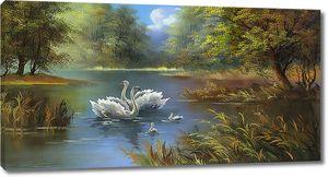 Лебеди с выводком