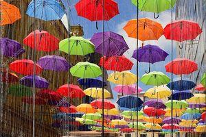 Красочные зонтики на улице