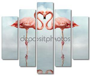 любовные птицы
