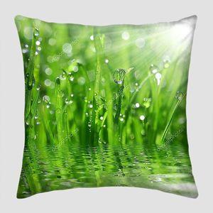 Капельки росы на травинках