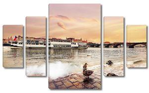 Утки на набережной реки Праги
