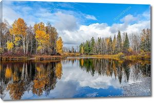 Красивый Осенний пейзаж с лесное озеро