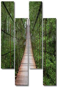 Подвесной мост в лесу