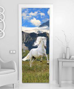 Дикий белый конь