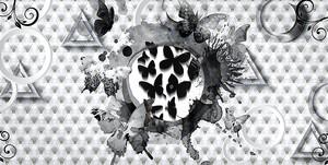 Бабочки ч\б