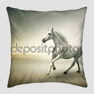 белая лошадь в движении