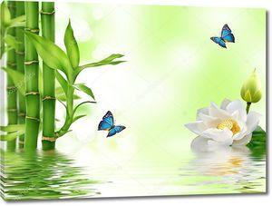Зеленый бамбук с кувшинкой белой