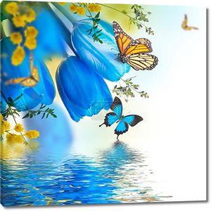 синие тюльпаны с мимозой и бабочками