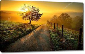Идиллический сельский пейзаж в Золотой свет