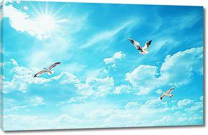 Голуби в синем небе