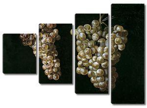 Хуан Фернандес. Две грозди винограда
