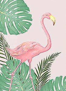 Вышагивающий фламинго