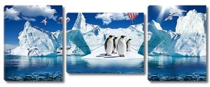 Пингвины у айсбергов