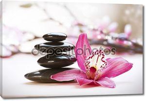 Спа камни и цветок орхидеи