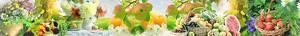 Большая панорама с фруктами и овощами