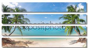 Панорамный тропический пляж с кокосовым ПА