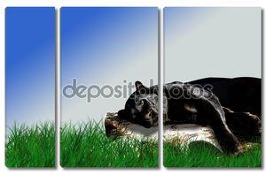 Черная пантера лежит на журнале